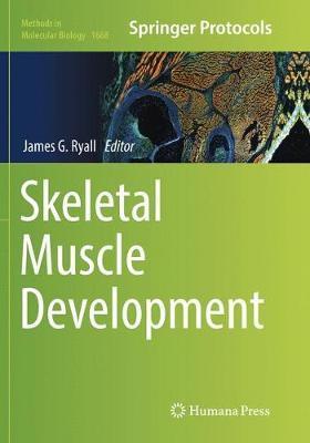Skeletal Muscle Development image