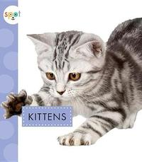 Kittens by Anastasia Suen