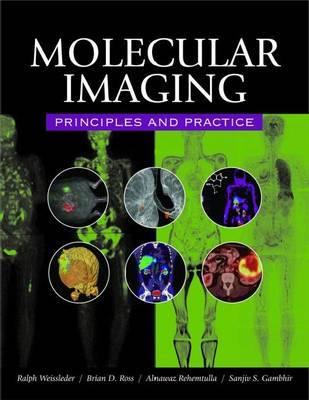 Molecular Imaging by Brian David Ross image