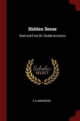 Hidden Sense by E R Babington image