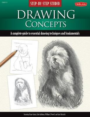 Drawing Concepts: A Complete Guide to Essential Drawing Techniques and Fundamentals by Diane Cardaci