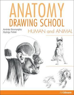 Anatomy Drawing School: Human and Animal