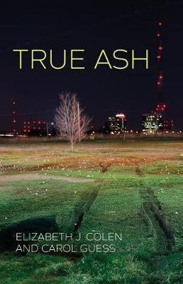 True Ash by Elizabeth J Colen