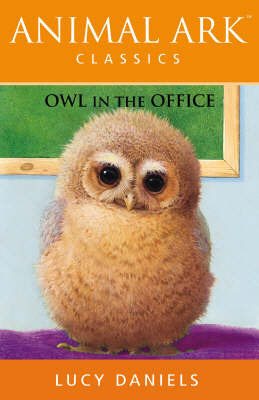 Owl in the Office by Lucy Daniels image