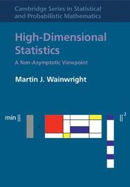 Cambridge Series in Statistical and Probabilistic Mathematics: Series Number 48 by Martin J Wainwright