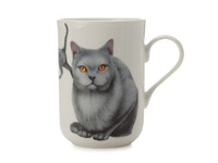 Maxwell & Williams - Cashmere Pets Cat Karthauser Mug (300ml)