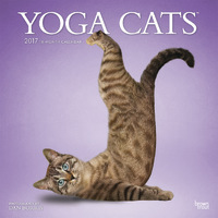 Yoga Cats 2017 Calendar by Inc Browntrout Publishers