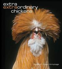 Extra Extraordinary Chickens by Stephen Green-Armytage image