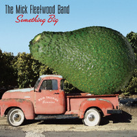 Something Big by The Mick Fleetwood Band