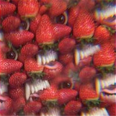 Floating Coffin (LP) by Thee Oh Sees
