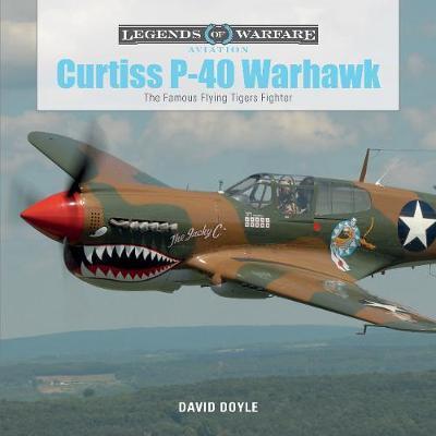 Curtiss P-40 Warhawk by David Doyle