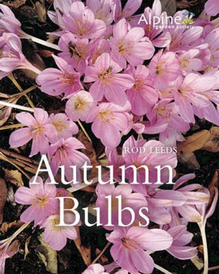 Autumn Bulbs by Rod Leeds
