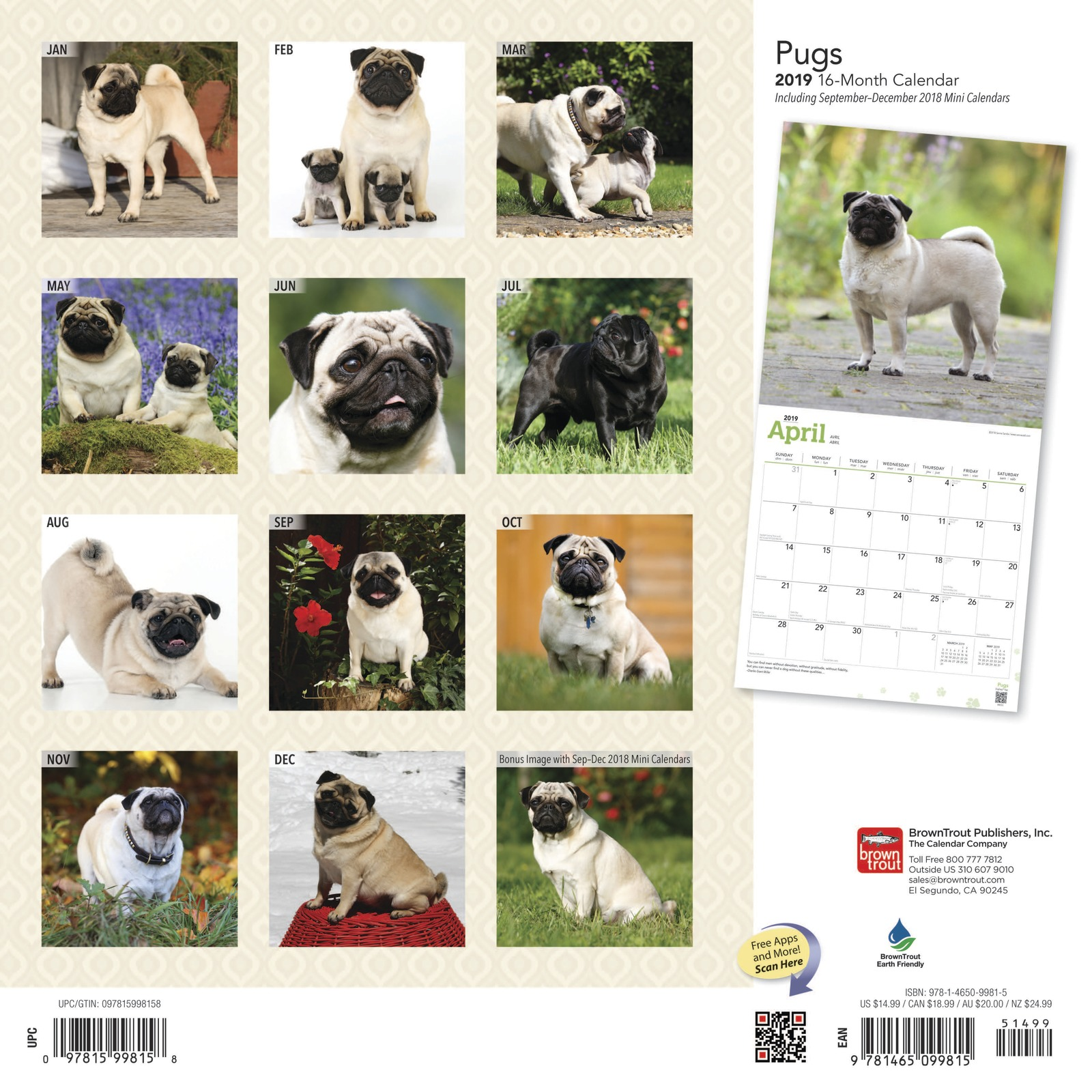 Pugs 2019 Square Wall Calendar by Inc Browntrout Publishers image