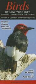 Birds of New York City Including Central Park & Long Island : A Guide to Common and Notable Species by Randi Minetor