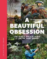 A Beautiful Obsession by Jimi Blake image