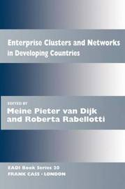 Enterprise Clusters and Networks in Developing Countries image