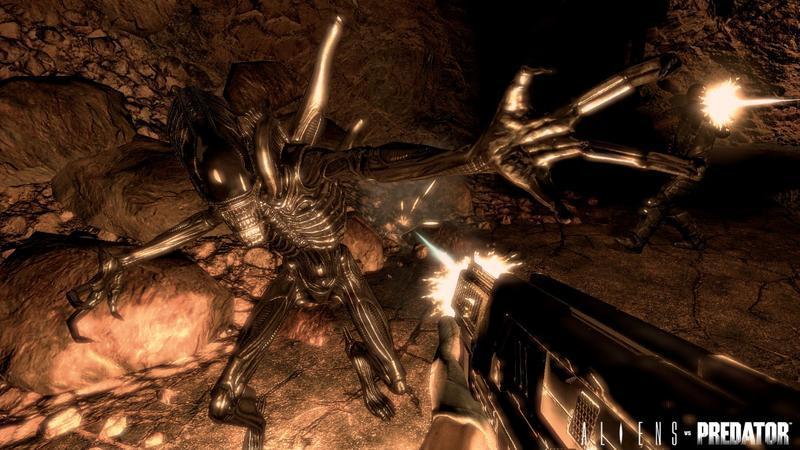 Aliens vs Predator Survivor Edition for PC Games image