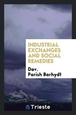 Industrial Exchanges and Social Remedies by Dav Parish Barhydt image