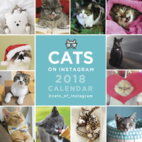 Cats On Instagram 2018 Mini Wall Calendar