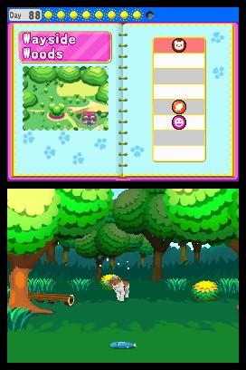 My Pet Shop for Nintendo DS image