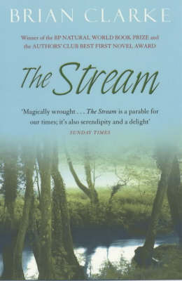 The Stream by Brian Clarke image