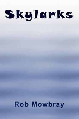 Skylarks by Rob Mowbray image