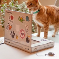 Suck Uk: Cat Playhouse Scratch Laptop