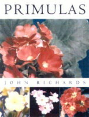 Primula by John Richards