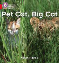 Pet Cat, Big Cat by Alison Hawes