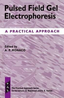 Pulsed Field Gel Electrophoresis image