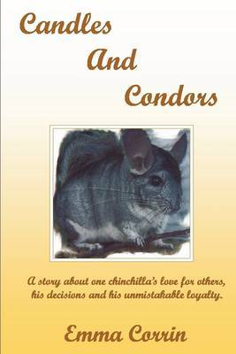 Candles and Condors by Emma Corin