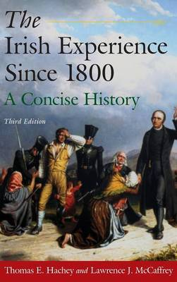 The Irish Experience Since 1800: A Concise History by Thomas E. Hachey