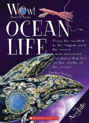 Ocean Life by Carolyn Franklin