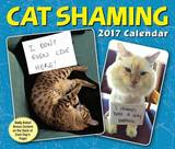 Cat Shaming 2017 Day-To-Day Calendar by Pedro Andrade
