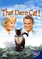 That Darn Cat! (1965) on DVD