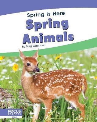 Spring Is Here: Spring Animals by Meg Gaertner