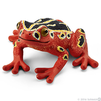 Schleich: African Reed Frog