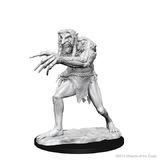 D&D Nolzurs Marvelous: Unpainted Minis - Troll