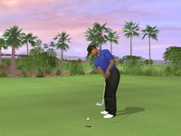 Tiger Woods PGA Tour 07 for PlayStation 2