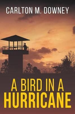 A Bird in a Hurricane by Carlton M Downey