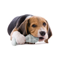 Pupsicle Canine Ice Lolly Maker image
