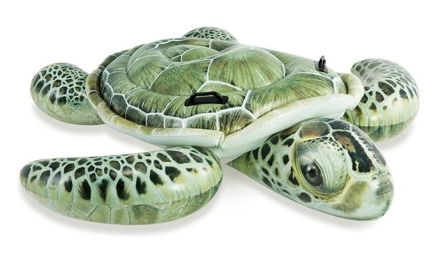 Intex: Realistic Sea Turtle Ride-on