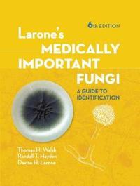 Larone's Medically Important Fungi by Tom Walsh image