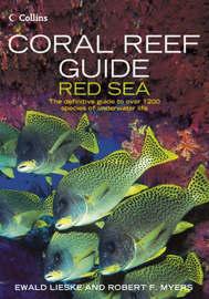 Coral Reef Guide Red Sea by Ewald Lieske image