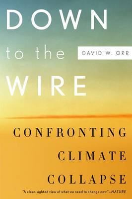 Down to the Wire by David W Orr