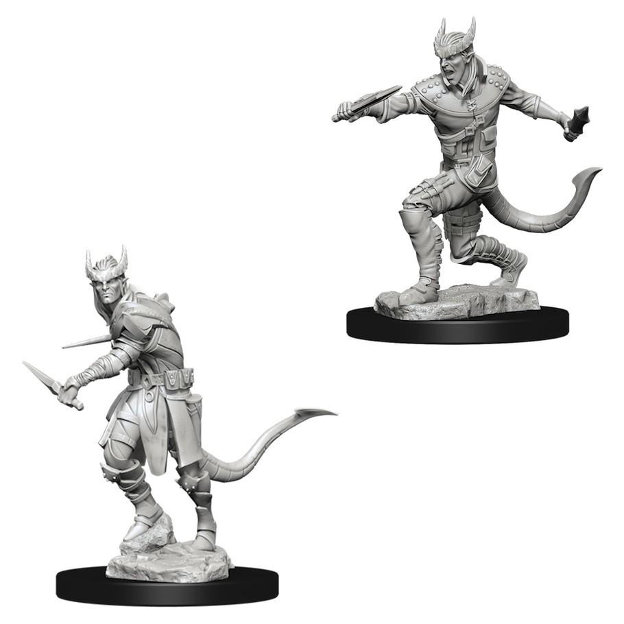 D&D Nolzur's Marvelous: Unpainted Miniatures - Tiefling Male Rogue image