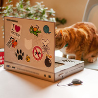 Suck Uk: Cat Playhouse Scratch Laptop image