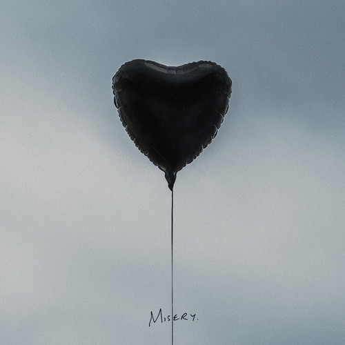 Misery (LP) by The Amity Affliction