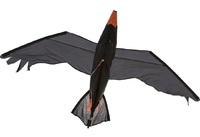 HQ Kites: Raven - 3D Designer Kite