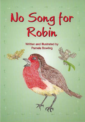 No Song for Robin by Pamela Bowling image